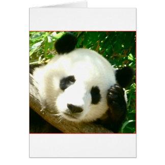 Cara de la panda tarjeta de felicitación