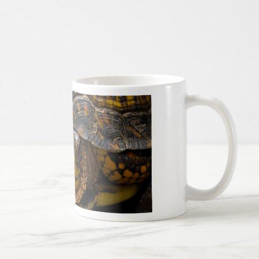 Cara de la tortuga taza