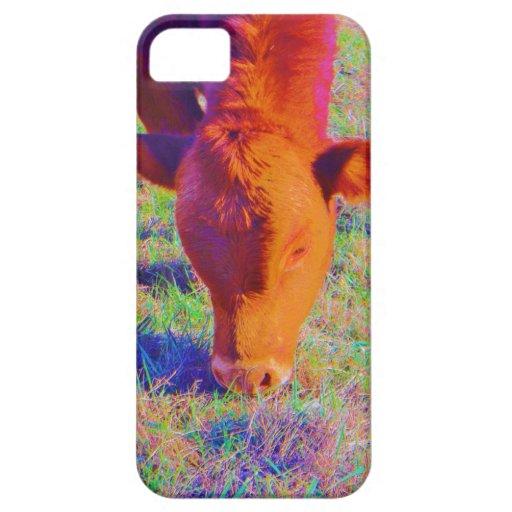 Cara de la vaca de Brown del bebé. HIERBA DEL ARCO iPhone 5 Case-Mate Carcasa