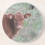 Cara de la vaca de Brown del bebé Posavasos Diseño