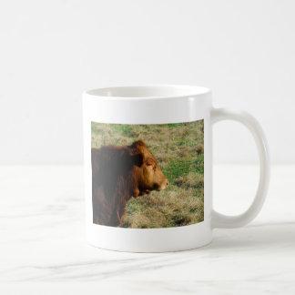Cara de la vaca del toro de Brown Taza De Café