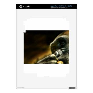 Cara de pensamiento del gorila iPad 3 pegatinas skins
