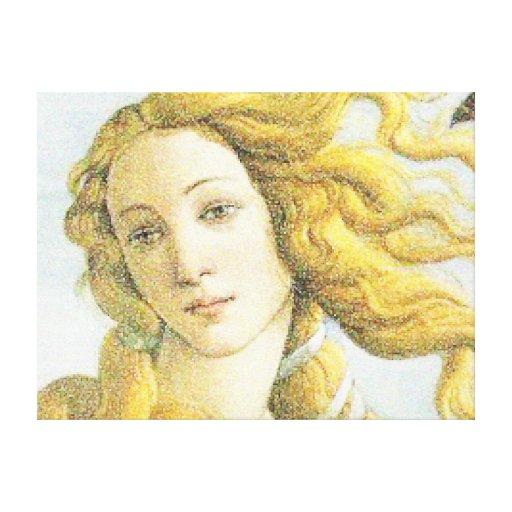Cara de Venus Lienzo Envuelto Para Galerías