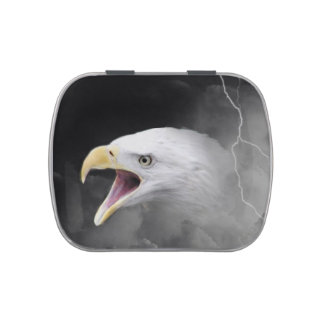 Cara del águila calva jarrones de dulces