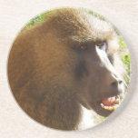 Cara del babuino que muestra los dientes posavasos para bebidas