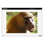Cara del babuino que muestra los dientes calcomanía para 38,1cm portátil