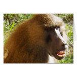 Cara del babuino que muestra los dientes felicitacion