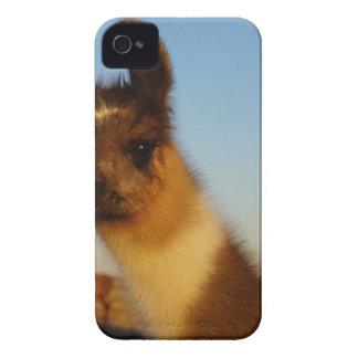 Cara del bebé iPhone 4 Case-Mate cobertura