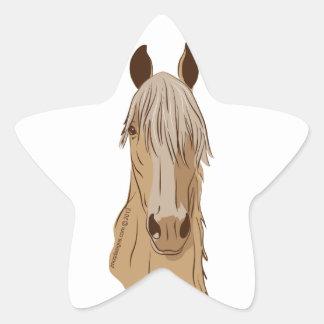 Cara del caballo de Paso Fino Colcomanias Forma De Estrellaes