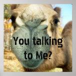 ¿Cara del camello, usted que habla conmigo? Poster
