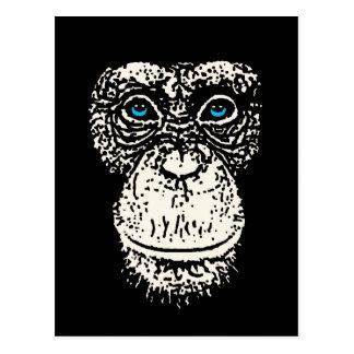 Cara del chimpancé con los ojos azules postales