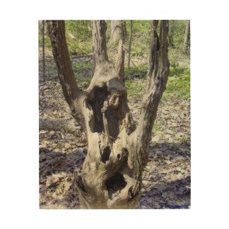 Cara del fantasma cuadros de madera