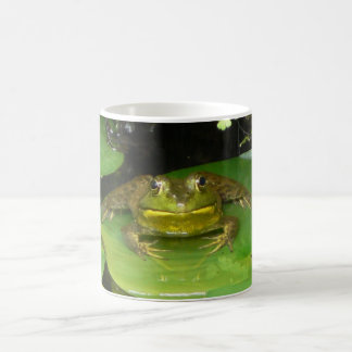 Cara del Froggy Taza