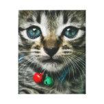 Cara del gatito lona envuelta para galerías