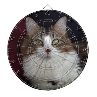 Cara del gato