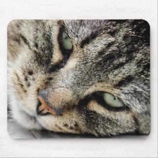 Cara del gato alfombrillas de raton