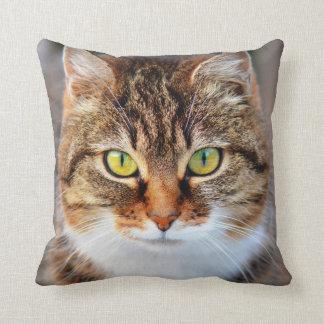 Cara del gato almohadas