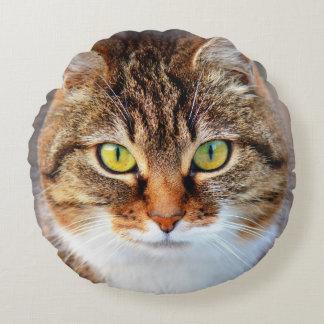 Cara del gato cojín redondo