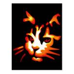 Cara del gato de Halloween que brilla intensamente Tarjetas Postales