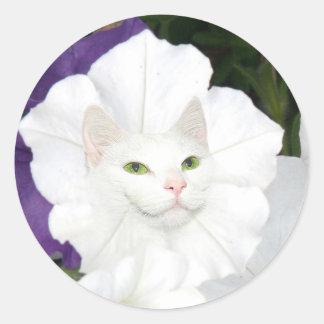 Cara del gato de la petunia pegatina redonda