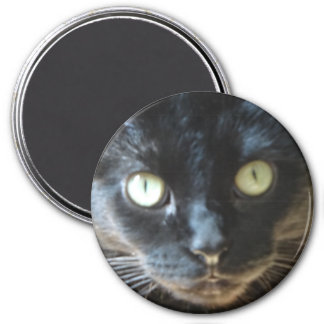 Cara del gato negro imán redondo 7 cm