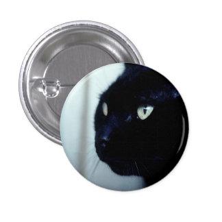 Cara del gato negro pins