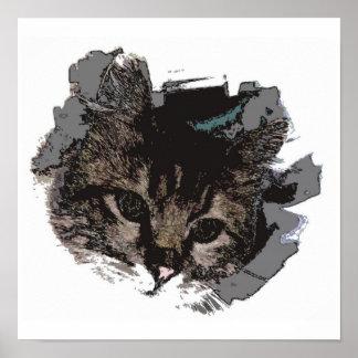Cara del gato - ojos de la impresión del poster de