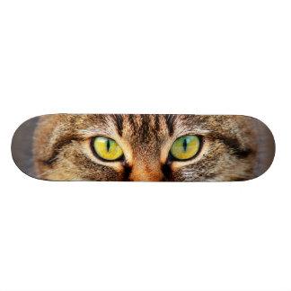 Cara del gato patineta personalizada