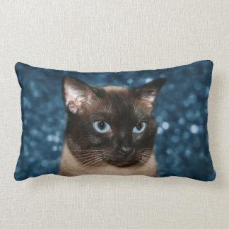 Cara del gato siamés almohada