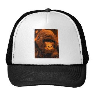 Cara del gorila gorra