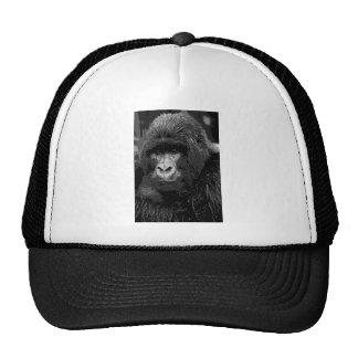 Cara del gorila gorros