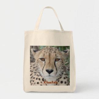 Cara del guepardo
