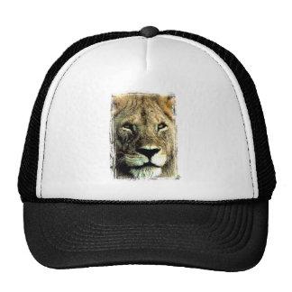 Cara del león gorra