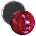 Cara del león imanes para frigoríficos