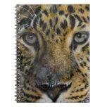 Cara del leopardo del hambre libros de apuntes