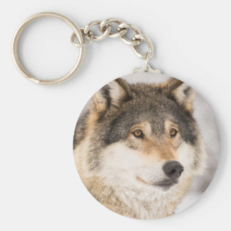 Cara del lobo llavero redondo tipo chapa