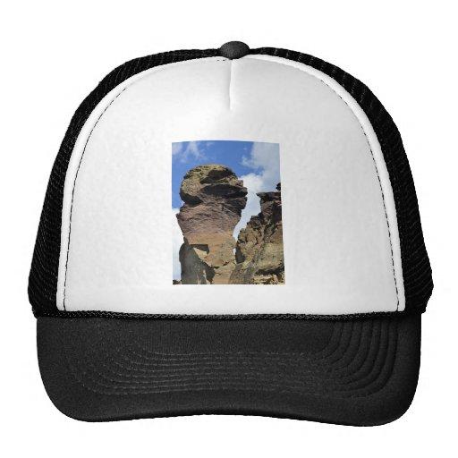 Cara del mono gorras