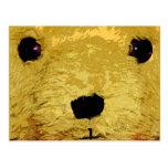 Cara del oso de peluche tarjeta postal