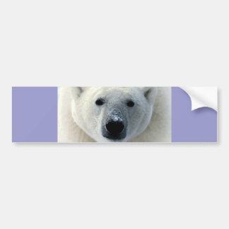 Cara del oso polar etiqueta de parachoque