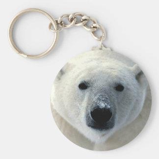 Cara del oso polar llavero redondo tipo pin