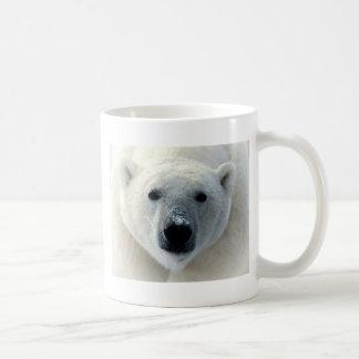 Cara del oso polar taza básica blanca