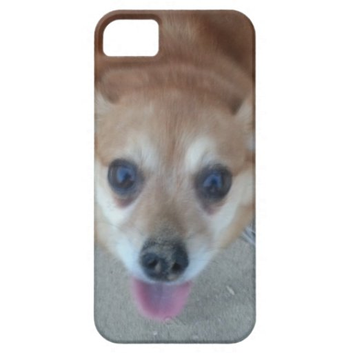 Cara del perrito iPhone 5 Case-Mate funda