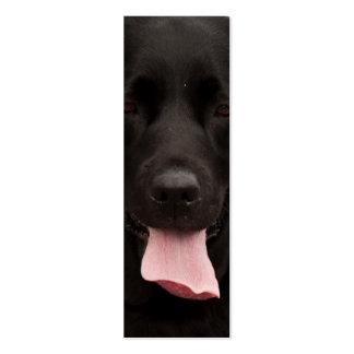Cara del perro negro
