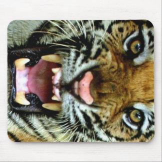 cara del tigre alfombrilla de ratón