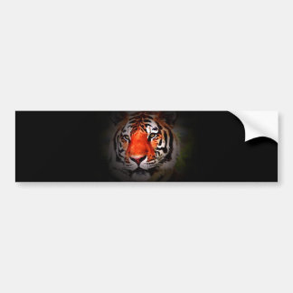Cara del tigre pegatina de parachoque