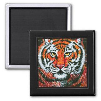 Cara del tigre imán cuadrado