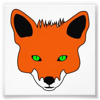 cara del zorro cojinete