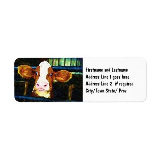Cara divertida de la vaca etiquetas de remite