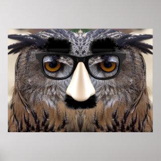 Cara divertida del búho con la máscara posters