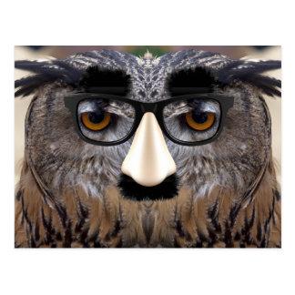 Cara divertida del búho con la máscara postales